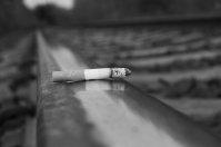 palenie, papieros